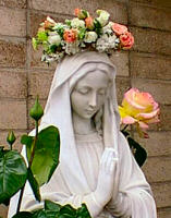 Month of Our Lady