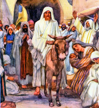 Palm Sunday of the Lord's Passion - April 14, 2019 - Liturgical