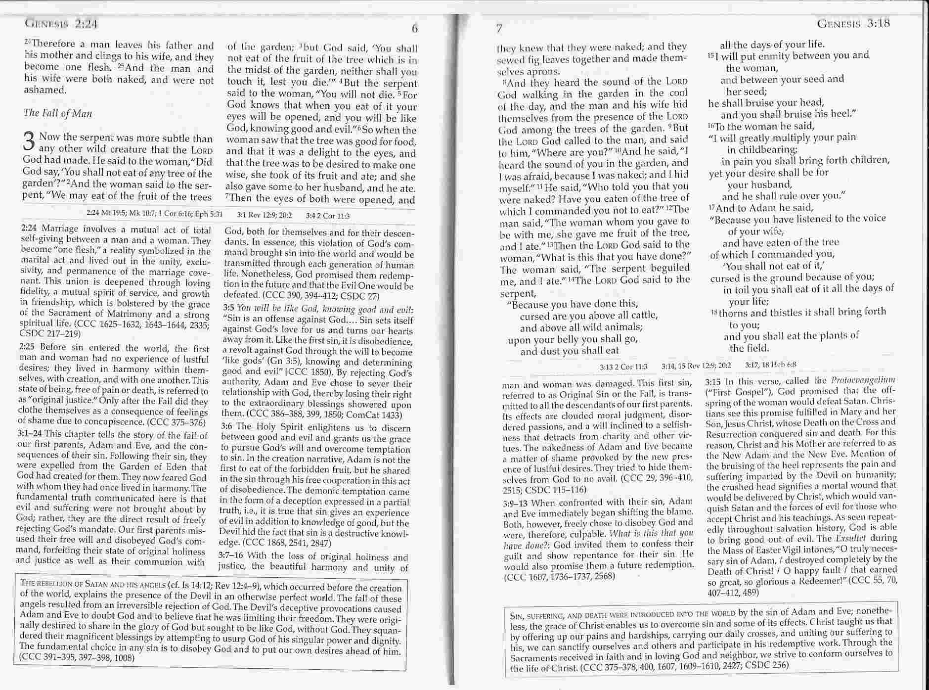 #101: The Didache