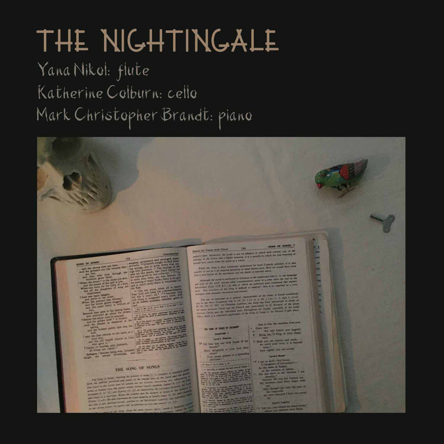 an analysis of the story the nightingale by hans christian andersen The nightingale [hans christian andersen towards the end of the story, the nightingale flies back on hearing that the emperor is on his death bed and sings the.